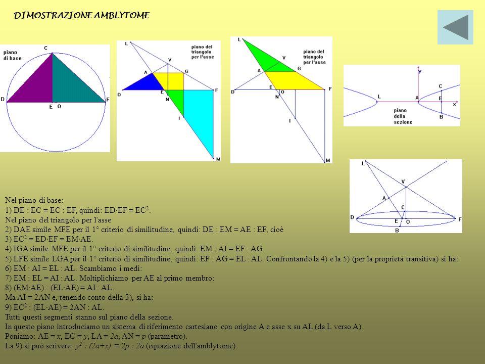 DIMOSTRAZIONE AMBLYTOME Nel piano di base: 1) DE : EC = EC : EF, quindi: ED·EF = EC 2. Nel piano del triangolo per l'asse 2) DAE simile MFE per il 1°