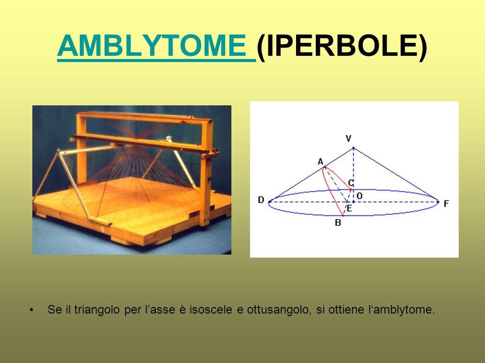 AMBLYTOME AMBLYTOME (IPERBOLE) Se il triangolo per lasse è isoscele e ottusangolo, si ottiene lamblytome.