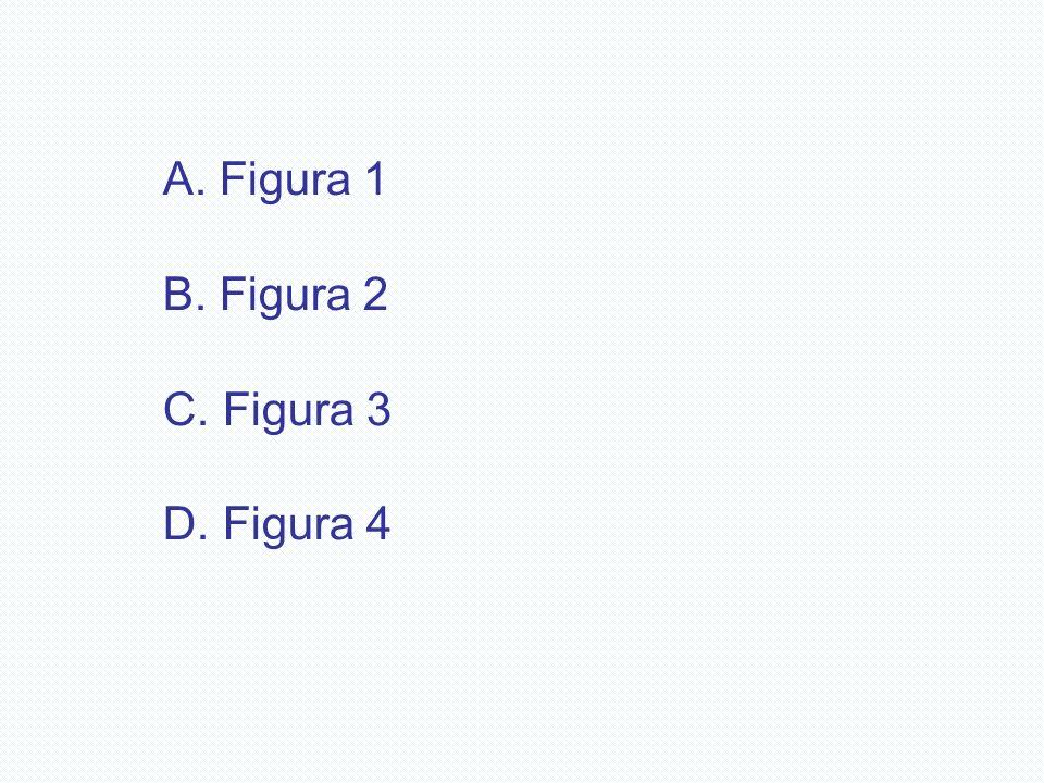 A. Figura 1 B. Figura 2 C. Figura 3 D. Figura 4
