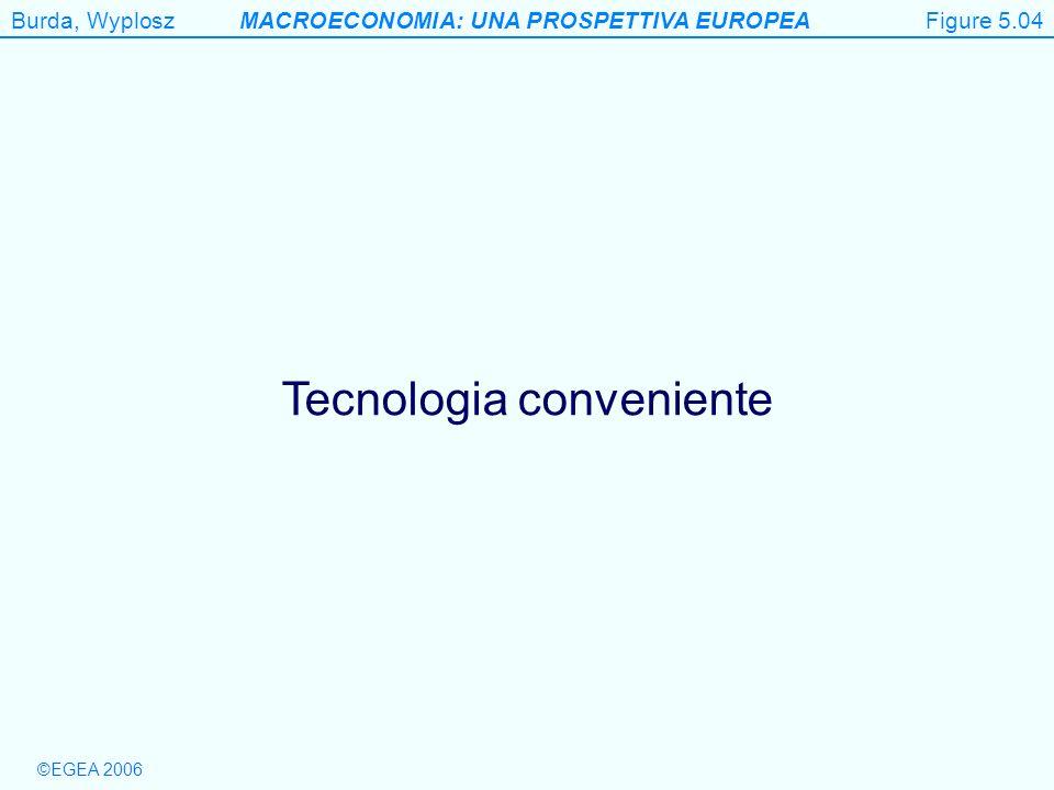 Burda, WyploszMACROECONOMIA: UNA PROSPETTIVA EUROPEA ©EGEA 2006 Figure 5.4 Tecnologia conveniente Figure 5.04