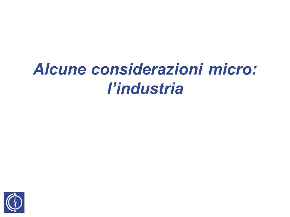 Alcune considerazioni micro: lindustria