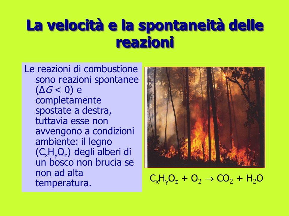 La velocità e la spontaneità delle reazioni Le reazioni di combustione sono reazioni spontanee (ΔG < 0) e completamente spostate a destra, tuttavia es