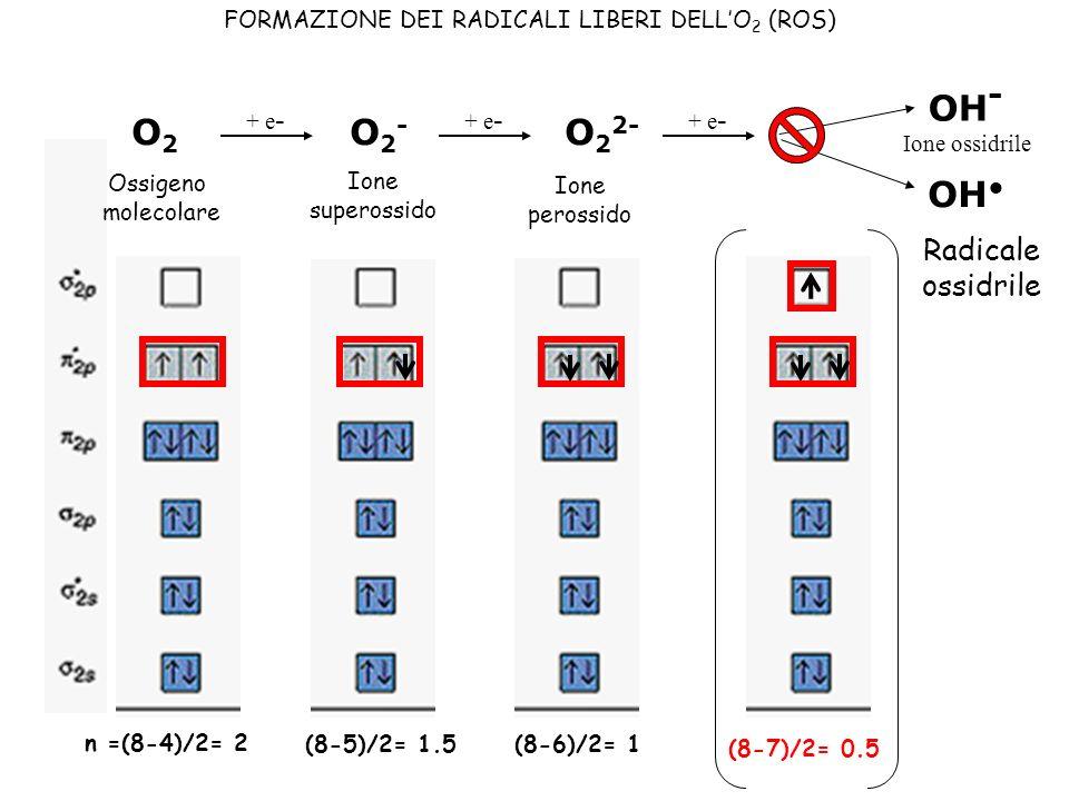 n =(8-4)/2= 2 O2O2 O2-O2- O 2 2- + e - (8-5)/2= 1.5 (8-6)/2= 1 (8-7)/2= 0.5 Ossigeno molecolare Ione superossido Ione perossido + e - OH - OH Ione oss