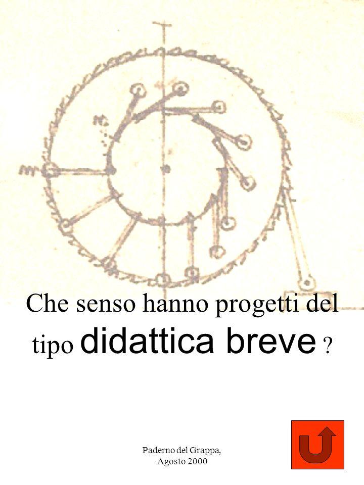 Paderno del Grappa, Agosto 2000 106 Che senso hanno progetti del tipo didattica breve ?