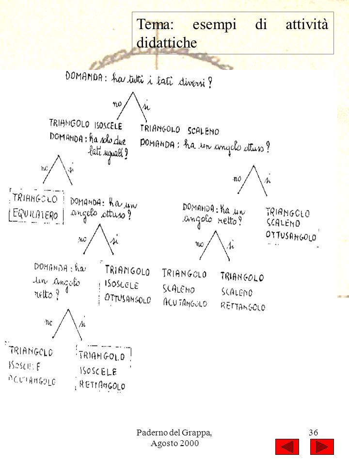 Paderno del Grappa, Agosto 2000 36 Tema: esempi di attività didattiche