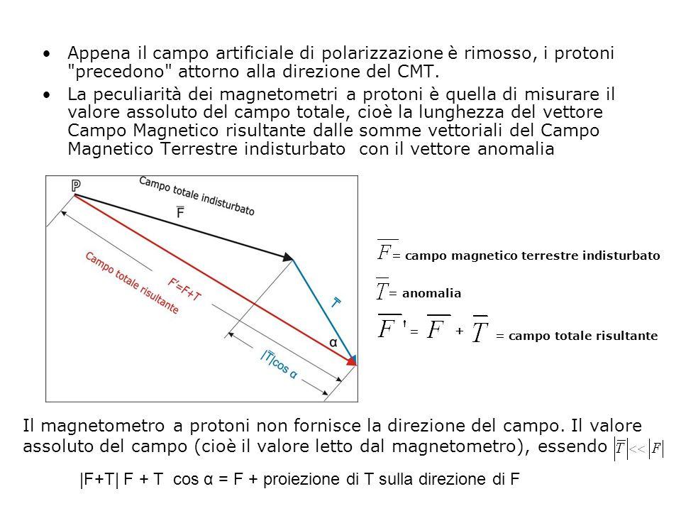 Appena il campo artificiale di polarizzazione è rimosso, i protoni