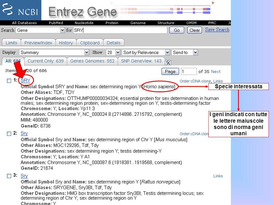 Specie interessata I geni indicati con tutte le lettere maiuscole sono di norma geni umani