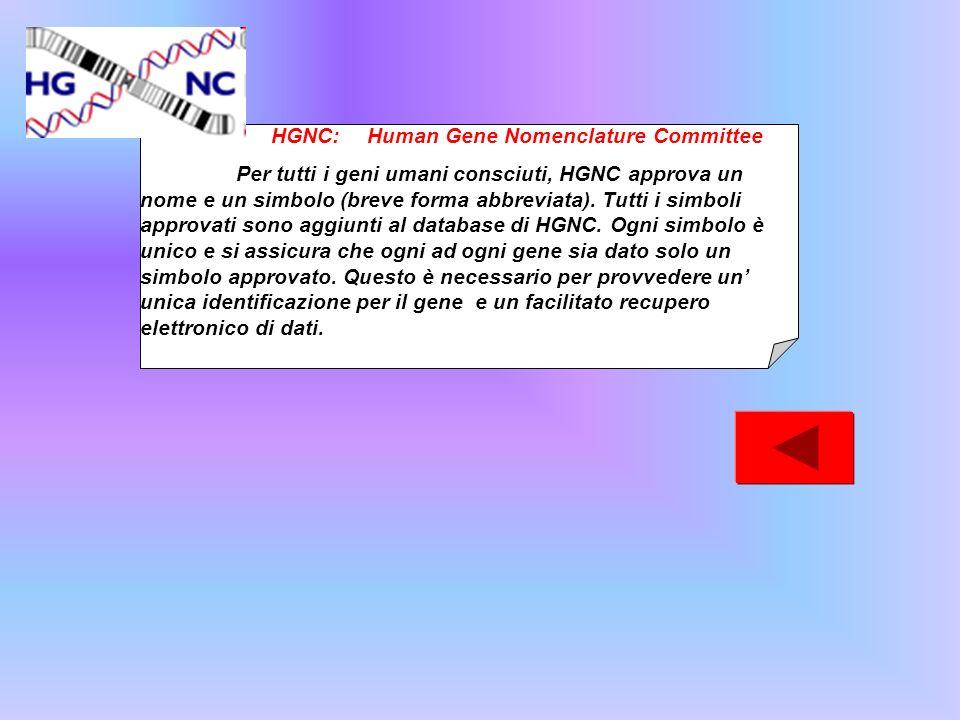 HGNC: Human Gene Nomenclature Committee Per tutti i geni umani consciuti, HGNC approva un nome e un simbolo (breve forma abbreviata). Tutti i simboli