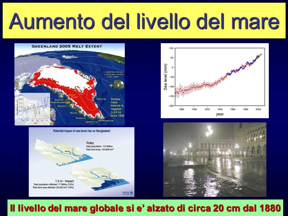 Aumento del livello del mare Il livello del mare globale si e alzato di circa 20 cm dal 1880