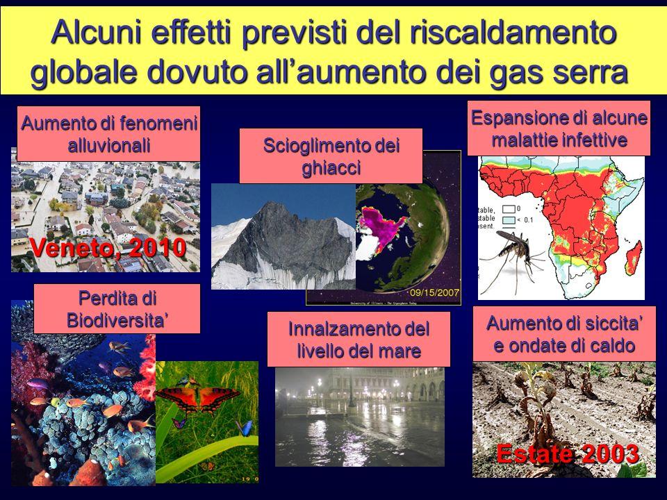 Alcuni effetti previsti del riscaldamento globale dovuto allaumento dei gas serra Aumento di fenomeni alluvionali Aumento di siccita e ondate di caldo