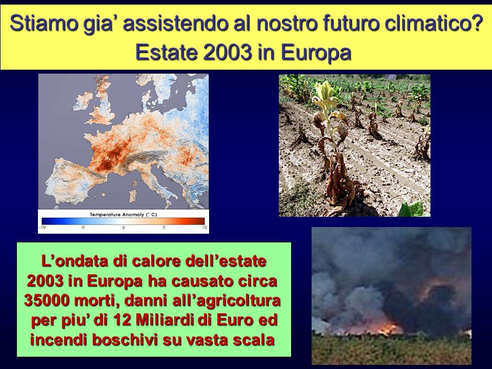 Stiamo gia assistendo al nostro futuro climatico? Estate 2003 in Europa Londata di calore dellestate 2003 in Europa ha causato circa 35000 morti, dann
