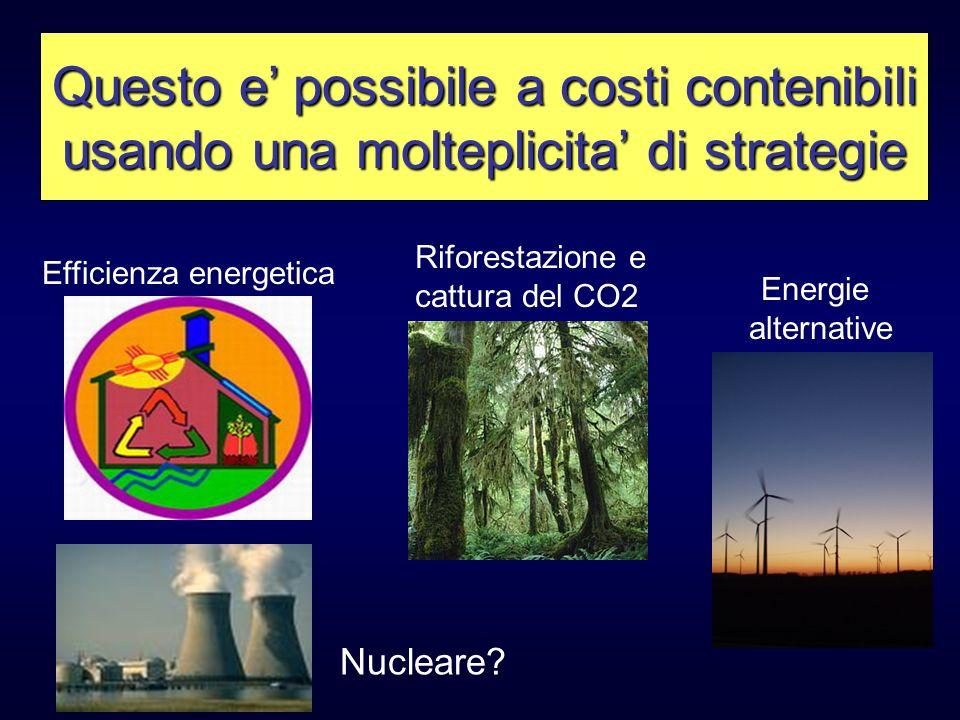 Questo e possibile a costi contenibili usando una molteplicita di strategie Efficienza energetica Riforestazione e cattura del CO2 Energie alternative