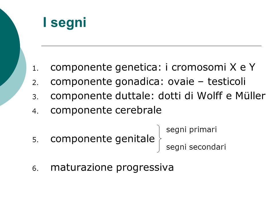 I segni 1. componente genetica: i cromosomi X e Y 2. componente gonadica: ovaie – testicoli 3. componente duttale: dotti di Wolff e Müller 4. componen