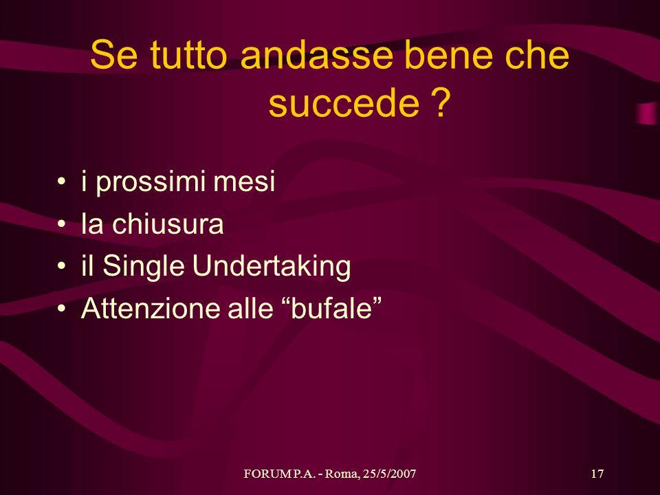 FORUM P.A. - Roma, 25/5/200717 Se tutto andasse bene che succede ? i prossimi mesi la chiusura il Single Undertaking Attenzione alle bufale