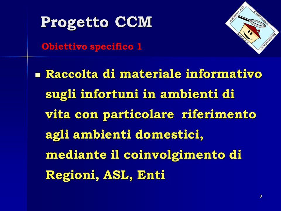 3 Progetto CCM Raccolta di materiale informativo sugli infortuni in ambienti di vita con particolare riferimento agli ambienti domestici, mediante il