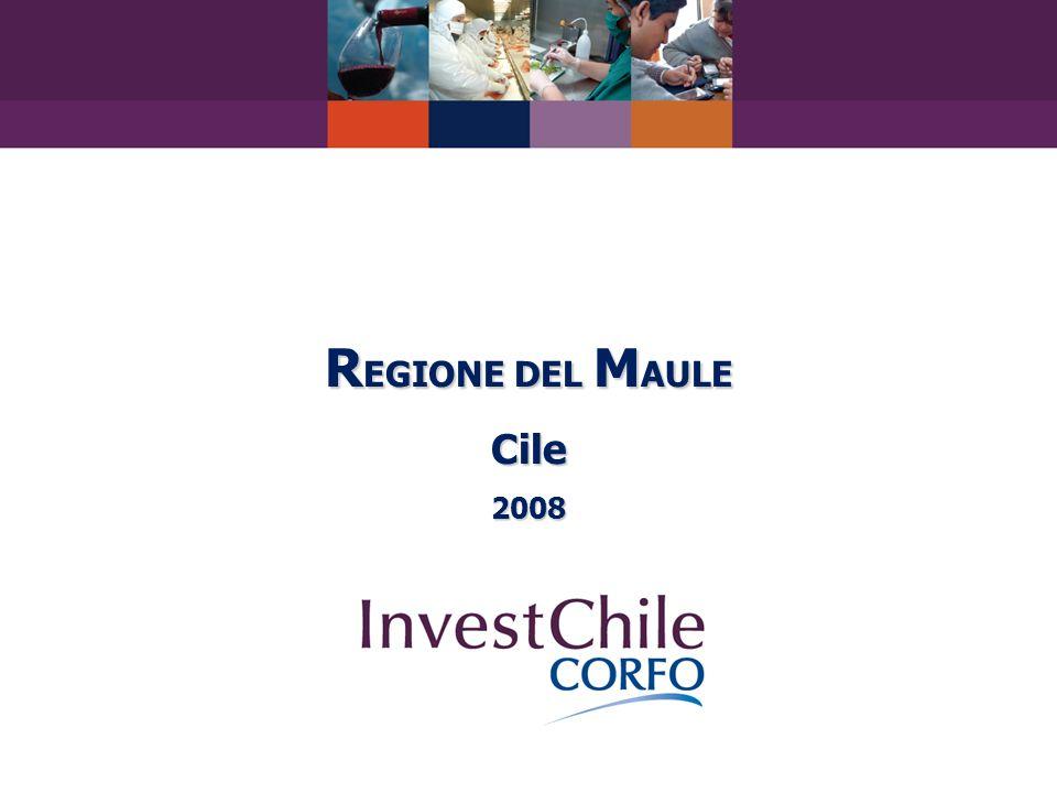 R EGIONE DEL M AULE Cile2008