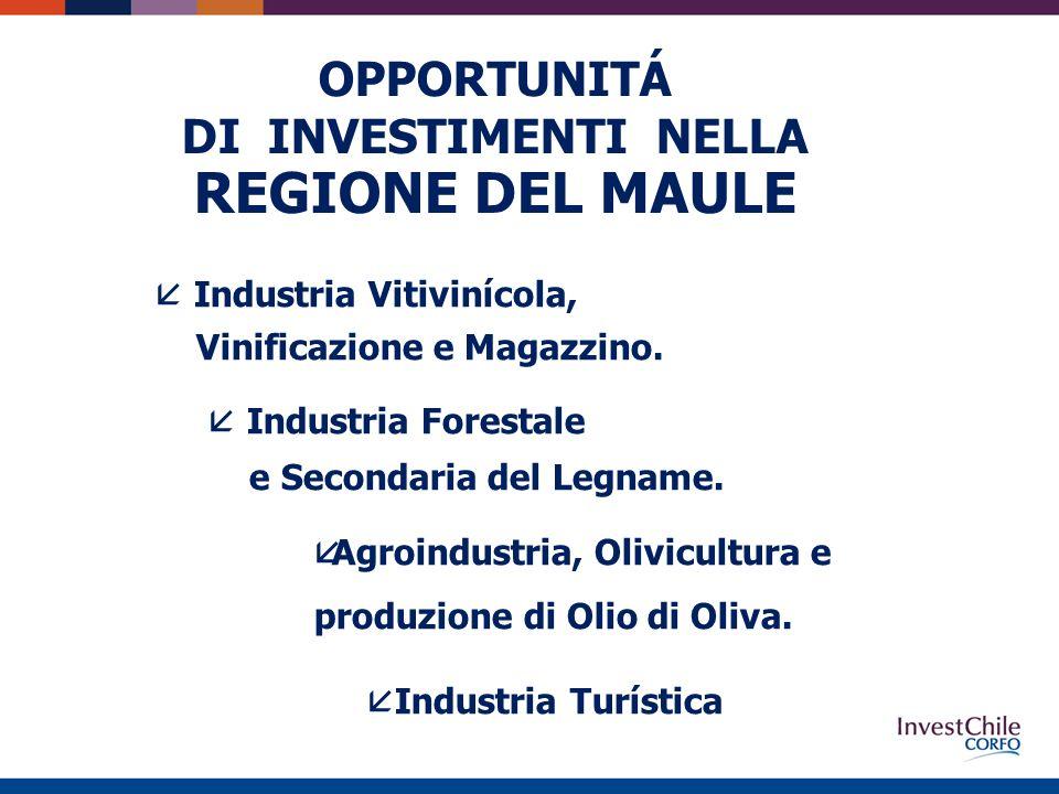 OPPORTUNITÁ DI INVESTIMENTI NELLA REGIONE DEL MAULE å Industria Vitivinícola, Vinificazione e Magazzino.