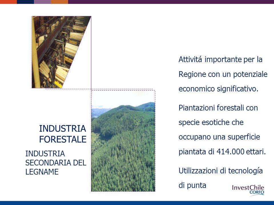 INDUSTRIA FORESTALE INDUSTRIA SECONDARIA DEL LEGNAME Attivitá importante per la Regione con un potenziale economico significativo.