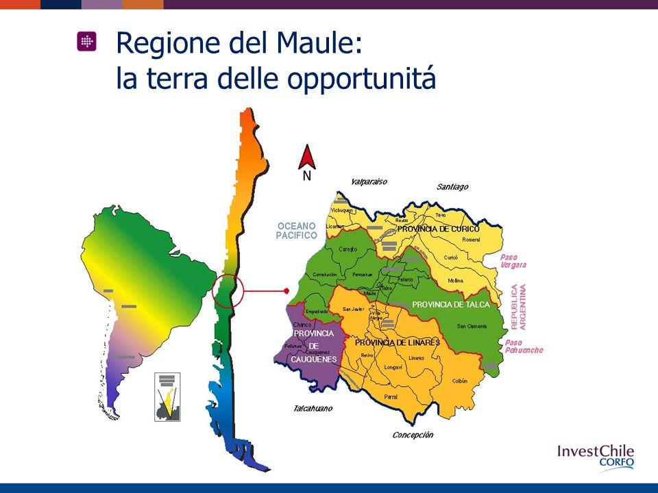 Regione del Maule: la terra delle opportunitá