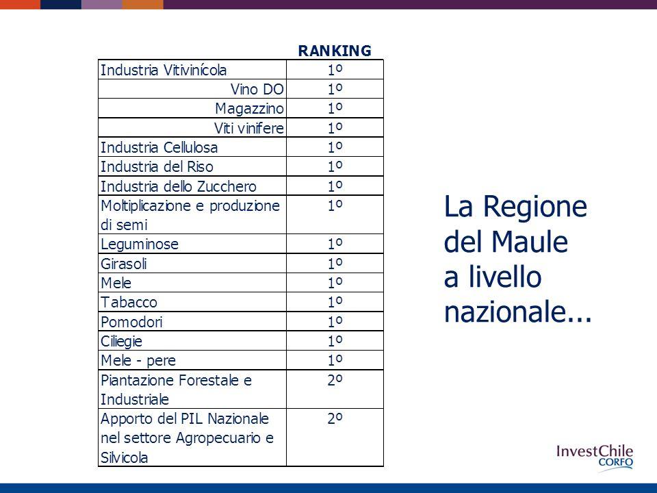 La Regione del Maule a livello nazionale...