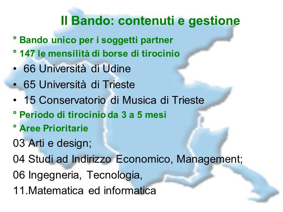 Il Bando: contenuti e gestione ° Bando unico per i soggetti partner ° 147 le mensilità di borse di tirocinio 66 Università di Udine 65 Università di T
