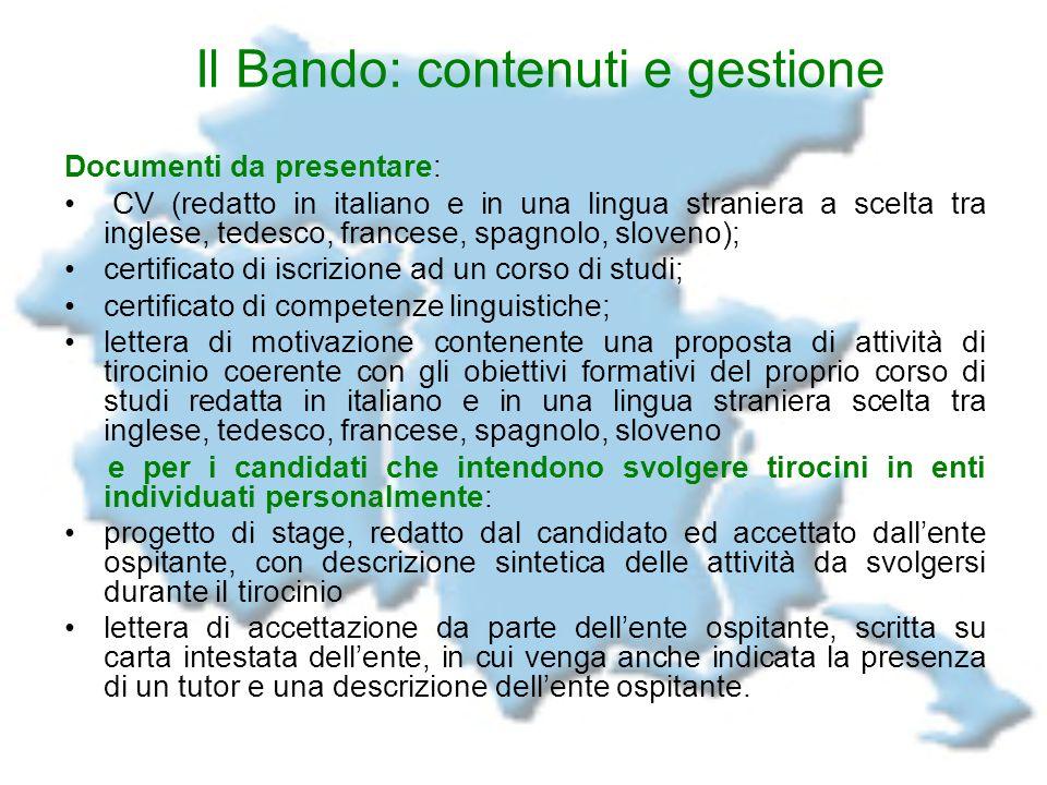 Il Bando: contenuti e gestione Documenti da presentare: CV (redatto in italiano e in una lingua straniera a scelta tra inglese, tedesco, francese, spa
