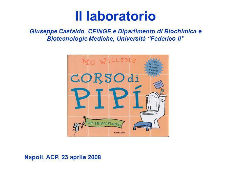Il laboratorio Giuseppe Castaldo, CEINGE e Dipartimento di Biochimica e Biotecnologie Mediche, Università Federico II Napoli, ACP, 23 aprile 2008