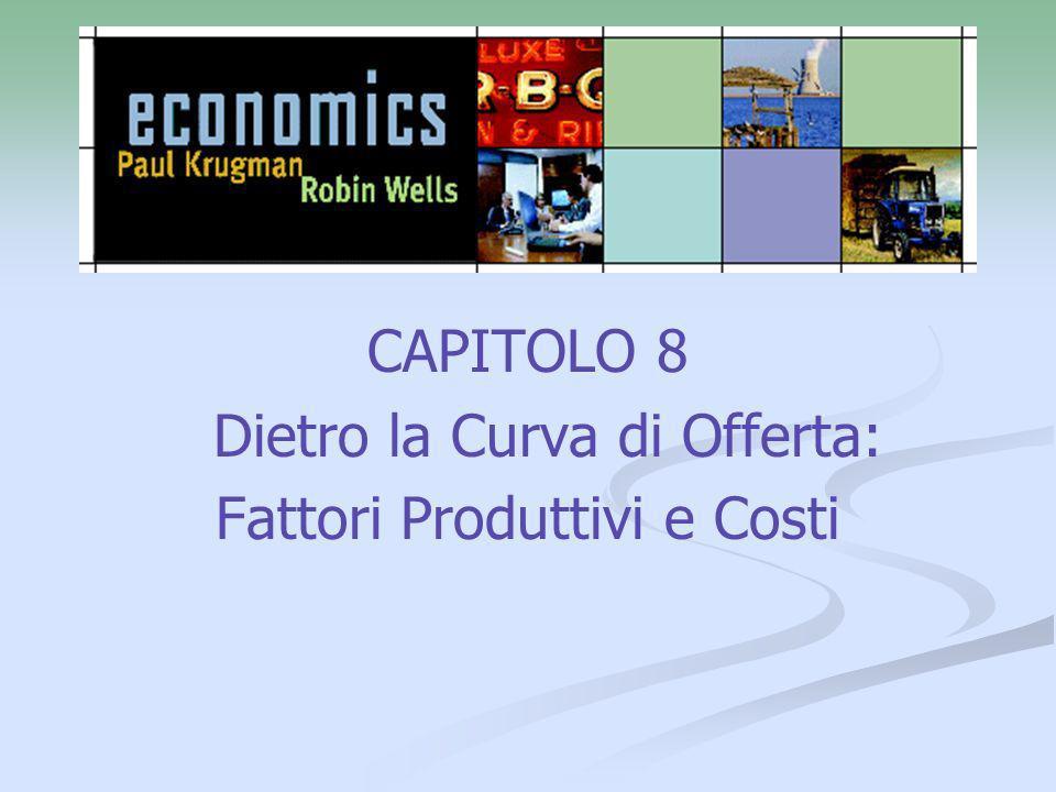 12 Dalla Funzione di Produzione alle Curve di Costo Il costo fisso è un costo che non dipende dalla quantità prodotta; corrisponde al costo del fattore di produzione fisso.