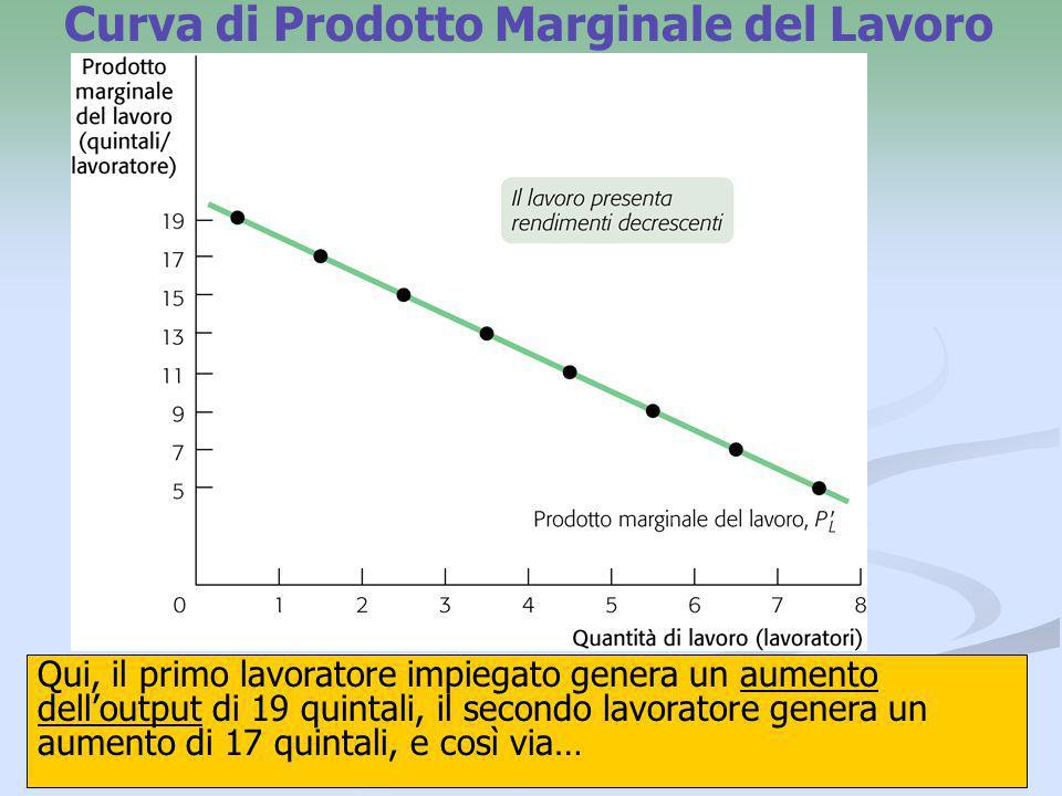 19 Curva di Costo Medio Totale degli Stivali La Scarpetta La curva di costo medio totale degli stivali La Scarpetta ha forma di U.