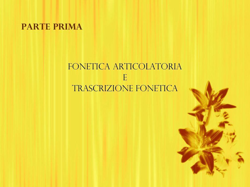 Parte prima FONETICA ARTICOLATORIA E TRASCRIZIONE FONETICA FONETICA ARTICOLATORIA E TRASCRIZIONE FONETICA