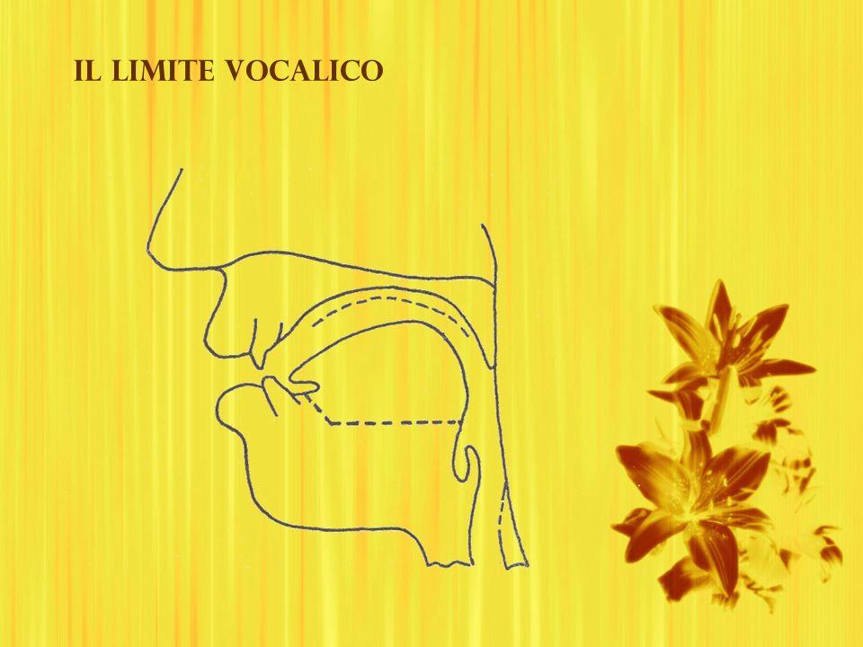 Il limite vocalico