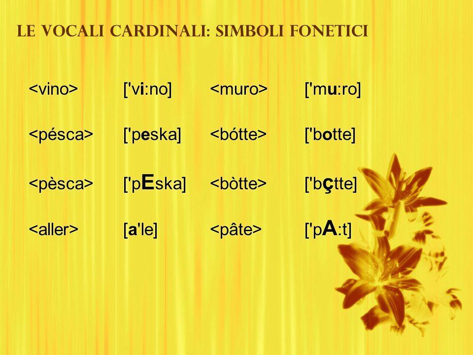 Le vocali cardinali: simboli fonetici ['vi:no] ['peska] ['p E ska] [a'le] ['vi:no] ['peska] ['p E ska] [a'le] ['mu:ro] ['botte] ['b ç tte] ['p A :t]