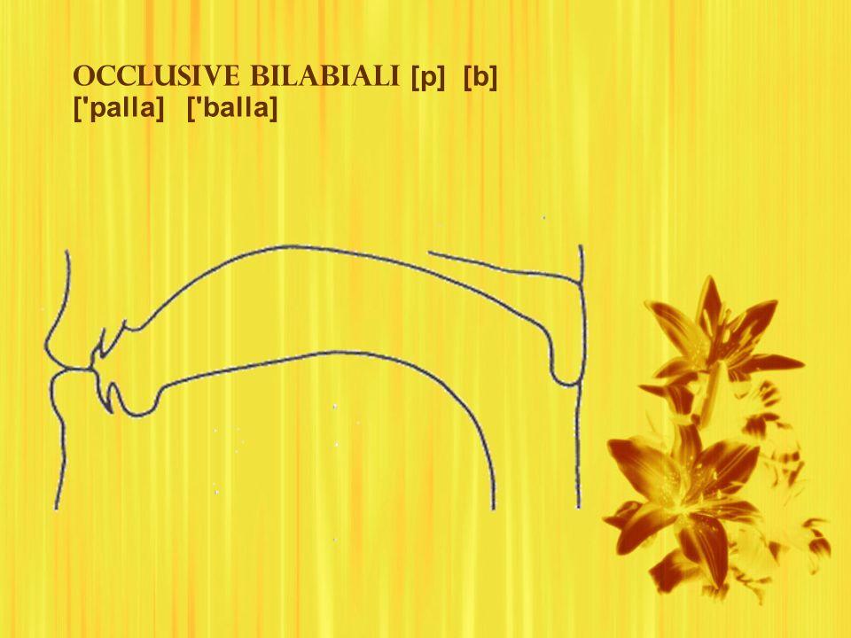 Occlusive bilabiali [p] [b] ['palla] ['balla]