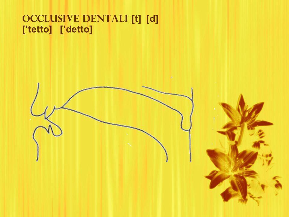 Occlusive dentali [t] [d] ['tetto] [detto]