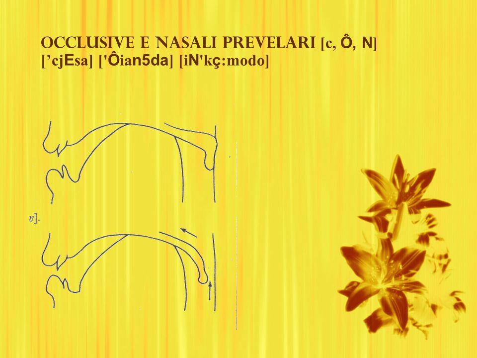 Occlusive e nasali prevelari [c, Ô, N ] [cj E sa] [' Ô ia n5da ] [i N 'k ç :modo]