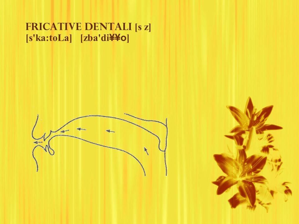 Fricative dentali [s z] [s'ka:toLa] [zba'di ¥¥o ]