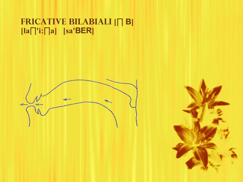 Fricative bilabiali [ B ] [la 'i: a] [sa' BER ]
