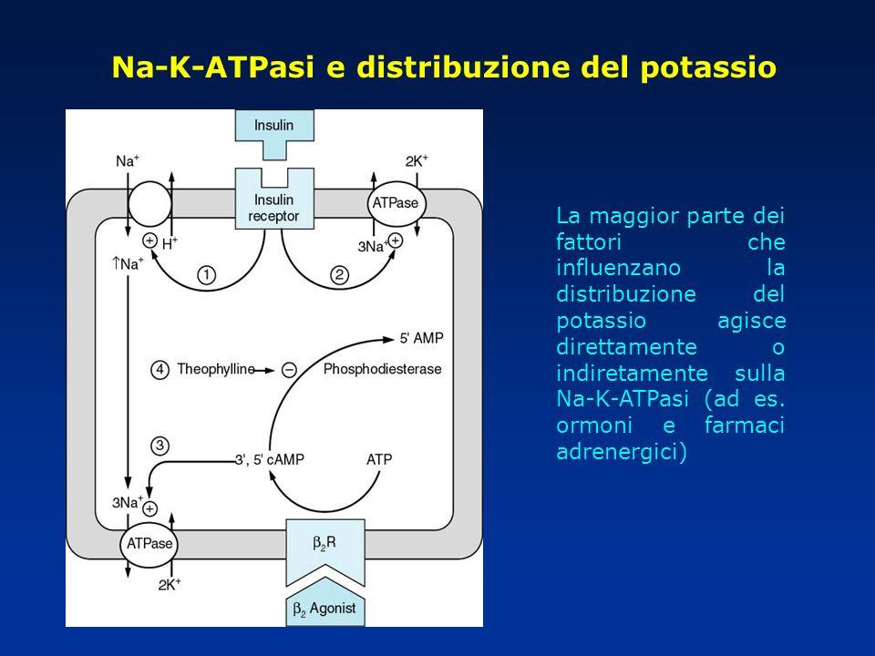 La maggior parte dei fattori che influenzano la distribuzione del potassio agisce direttamente o indiretamente sulla Na-K-ATPasi (ad es. ormoni e farm