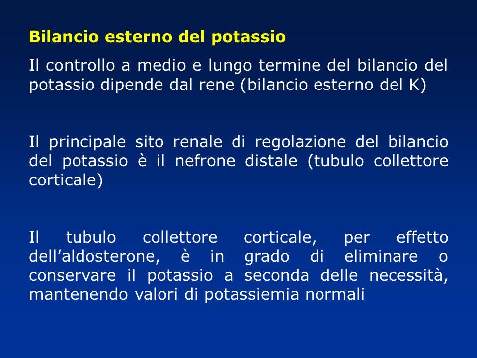 Bilancio esterno del potassio Il controllo a medio e lungo termine del bilancio del potassio dipende dal rene (bilancio esterno del K) Il principale s
