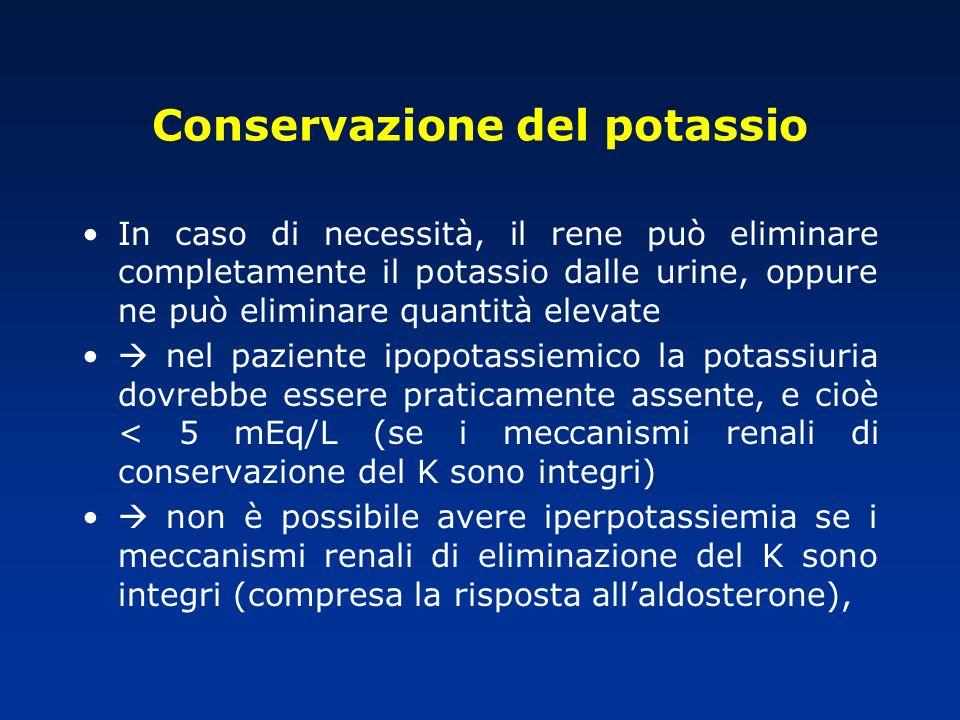 Conservazione del potassio In caso di necessità, il rene può eliminare completamente il potassio dalle urine, oppure ne può eliminare quantità elevate