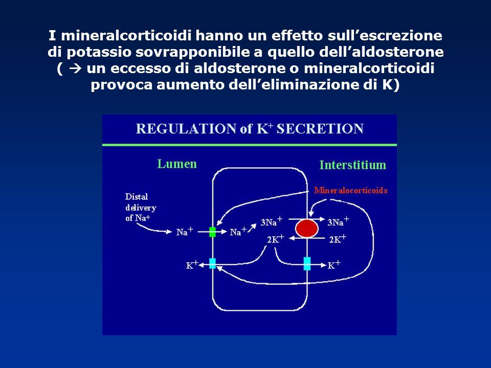 I mineralcorticoidi hanno un effetto sullescrezione di potassio sovrapponibile a quello dellaldosterone ( un eccesso di aldosterone o mineralcorticoid