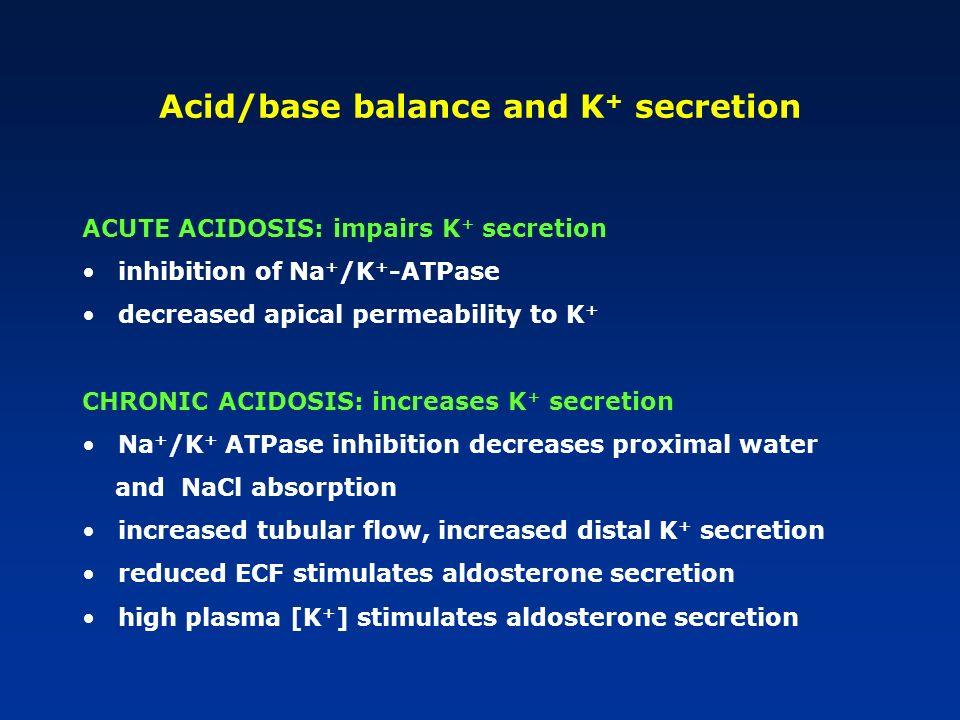 Acid/base balance and K + secretion ACUTE ACIDOSIS: impairs K + secretion inhibition of Na + /K + -ATPase decreased apical permeability to K + CHRONIC