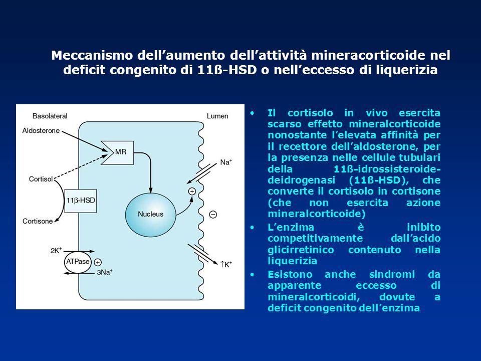 Il cortisolo in vivo esercita scarso effetto mineralcorticoide nonostante lelevata affinità per il recettore dellaldosterone, per la presenza nelle ce