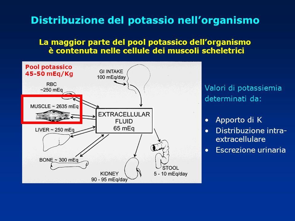 Distribuzione del potassio nellorganismo La maggior parte del pool potassico dellorganismo è contenuta nelle cellule dei muscoli scheletrici Valori di