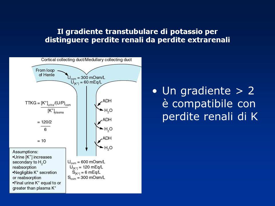 Un gradiente > 2 è compatibile con perdite renali di K Il gradiente transtubulare di potassio per distinguere perdite renali da perdite extrarenali