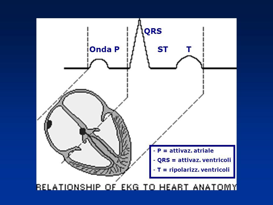 Onda P QRS ST T - P = attivaz. atriale - QRS = attivaz. ventricoli - T = ripolarizz. ventricoli