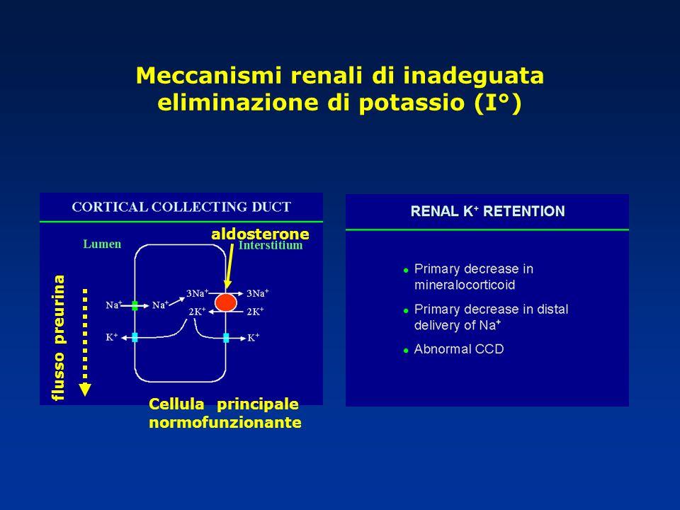 Meccanismi renali di inadeguata eliminazione di potassio (I°) flusso preurina aldosterone Cellula principale normofunzionante
