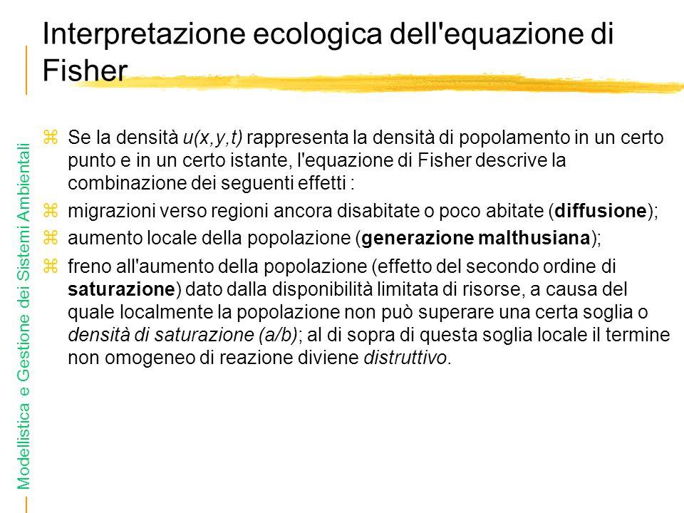 Modellistica e Gestione dei Sistemi Ambientali Interpretazione ecologica dell equazione di Fisher Se la densità u(x,y,t) rappresenta la densità di popolamento in un certo punto e in un certo istante, l equazione di Fisher descrive la combinazione dei seguenti effetti : migrazioni verso regioni ancora disabitate o poco abitate (diffusione); aumento locale della popolazione (generazione malthusiana); freno all aumento della popolazione (effetto del secondo ordine di saturazione) dato dalla disponibilità limitata di risorse, a causa del quale localmente la popolazione non può superare una certa soglia o densità di saturazione (a/b); al di sopra di questa soglia locale il termine non omogeneo di reazione diviene distruttivo.