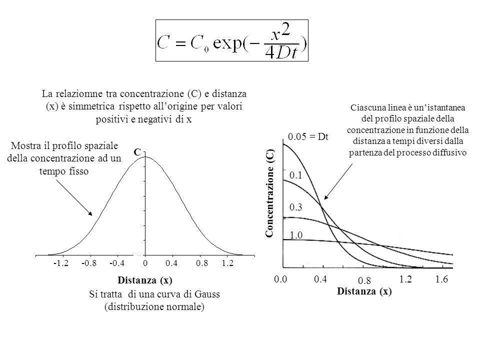 Condizione iniziale: a t=0 tutte le N o particelle sono concentrate nellarea (A) Condizioni al contorno: (1.) la concentrazione è finita ovunque. (2.)