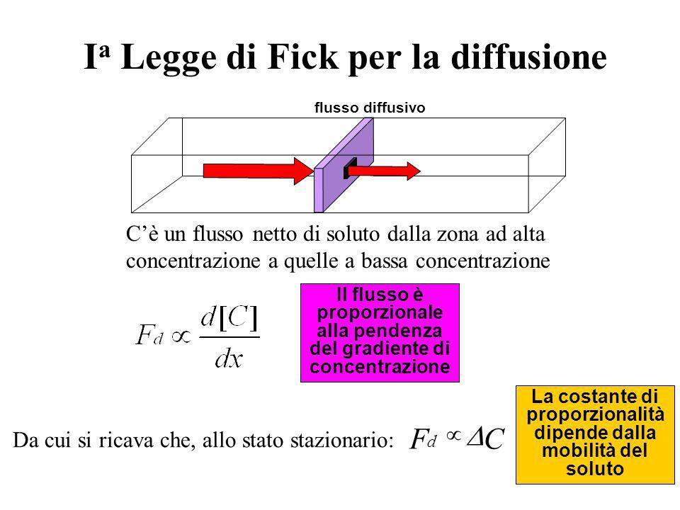 Distanza (x) 0.00.4 0.8 1.21.6 Concentrazione (C) 0.05 = Dt 0.1 0.3 1.0 Ciascuna linea è unistantanea del profilo spaziale della concentrazione in fun